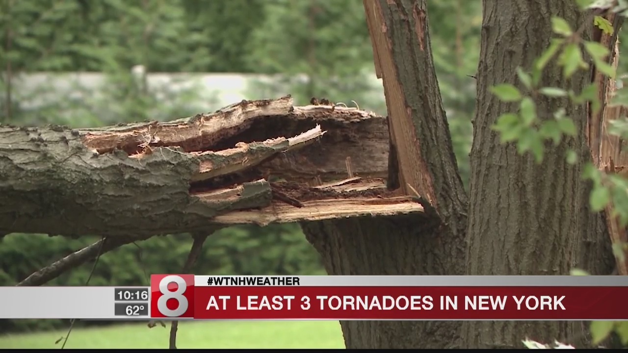 Weather Service: Tornadoes touched down in NYC suburbs