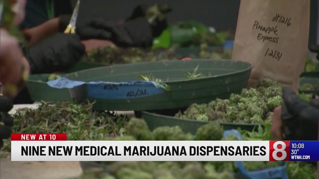 how to start a medical marijuana dispensary in new mexico