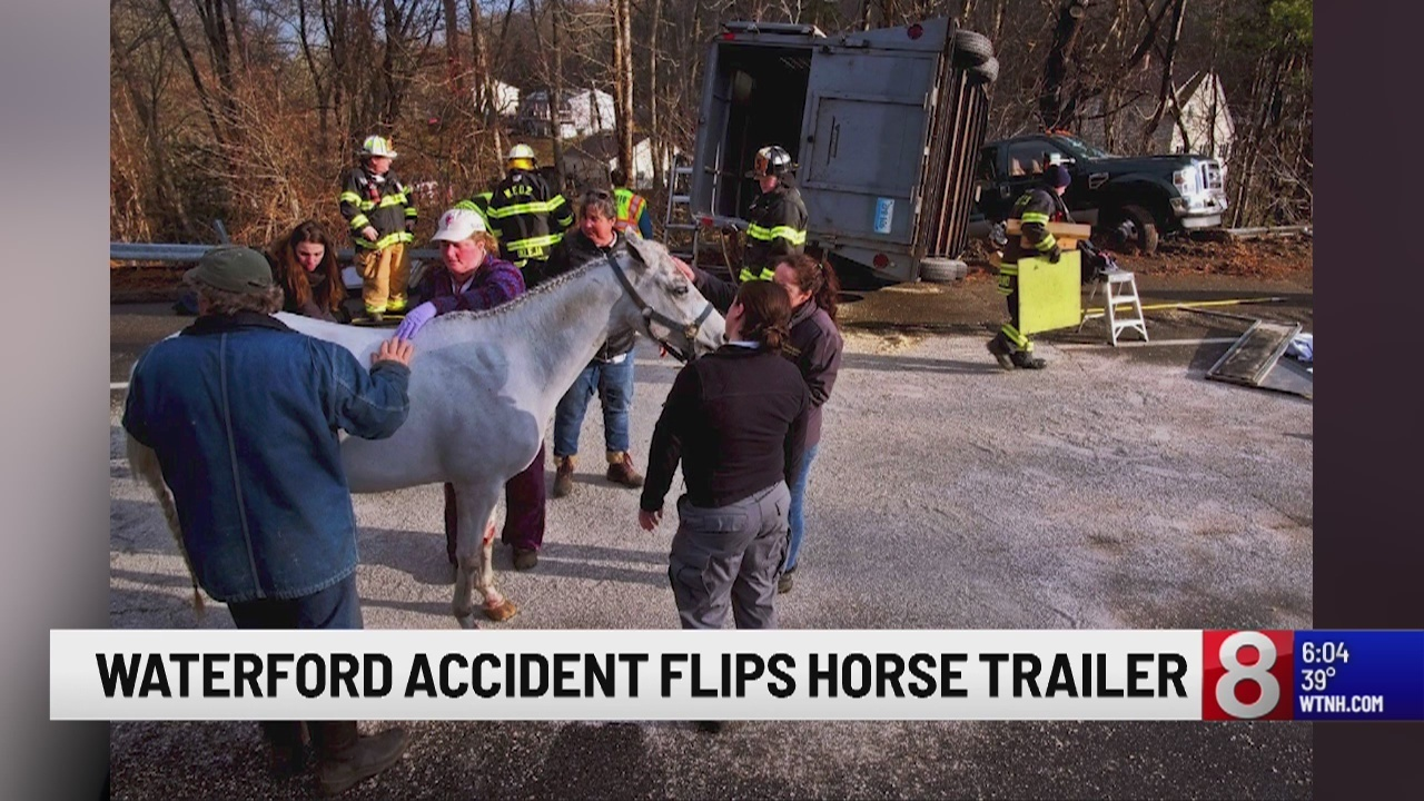 2 horses rescued after crash in Waterford on Sunday morning