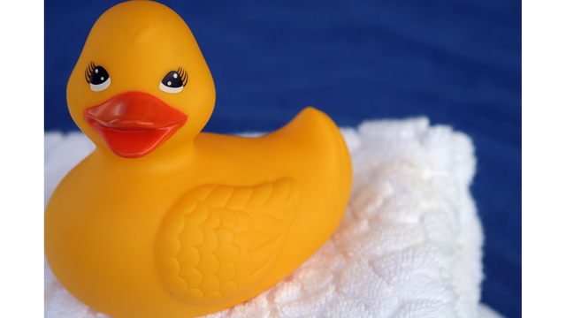 Sunday marks National Rubber Ducky day!