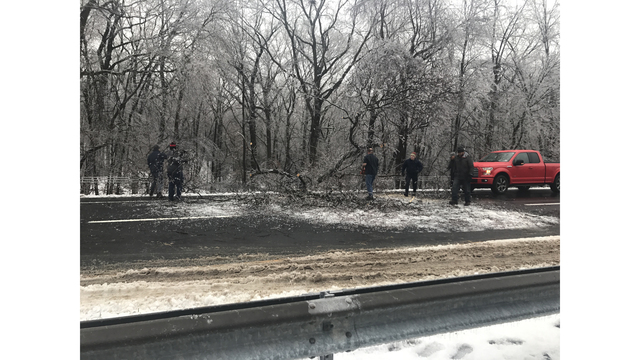 Tree comes down on southbound side of Merritt Parkway in