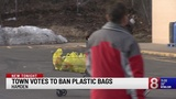 Town of Hamden votes to ban single-use plastic bags