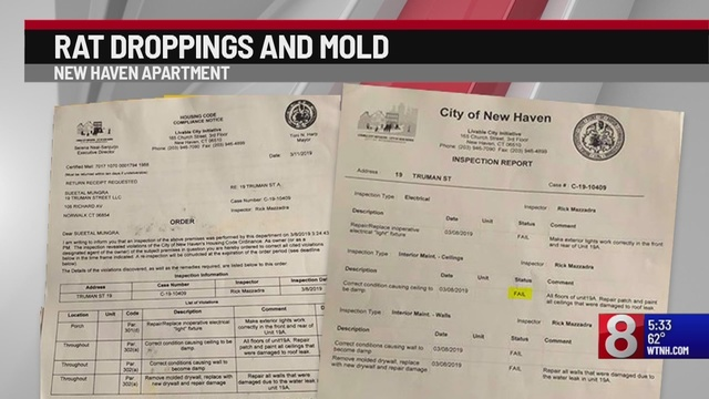 Mold rats force family of 6 out of New Haven apartment